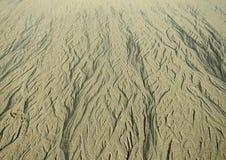 Modello in sabbia Immagine Stock