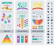 Modello sano di Infographic dell'alimento Fotografia Stock Libera da Diritti