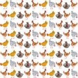 Modello senza cuciture animale con il pollo ed il gallo Illustrazione disegnata a mano dell'acquerello, ideale per la stampa sul  illustrazione vettoriale
