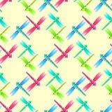 Modello senza cuciture bianco rosa verde blu della libellula Fotografia Stock Libera da Diritti