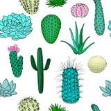 Modello senza cuciture colorato dei cactus, illustrazione disegnata a mano di vettore Raccolta succulente n Fotografie Stock