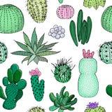 Modello senza cuciture colorato dei cactus, illustrazione disegnata a mano di vettore Raccolta succulente n Immagine Stock