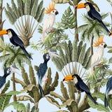 Modello senza cuciture con gli alberi esotici ed uccello, pappagalli e tucani selvaggi Carta da parati d'annata interna royalty illustrazione gratis