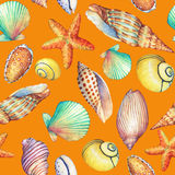 Modello senza cuciture con gli oggetti subacquei di vita, isolati su fondo arancio Progettazione-SHELL marino, stella di mare Man Fotografie Stock