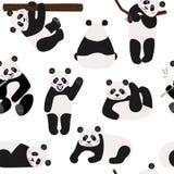 Modello senza cuciture con gli orsi di panda divertenti, illustrazione di vettore illustrazione di stock
