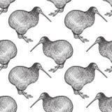 Modello senza cuciture con gli uccelli del kiwi Immagini Stock