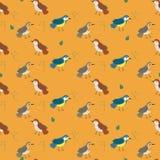 Modello senza cuciture con gli uccelli di colore arancio nello stile di scarabocchio royalty illustrazione gratis