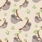 Modello senza cuciture con i bradipi svegli sui rami tropicali delle liane illustrazione vettoriale