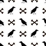 Modello senza cuciture con i corvi e le ossa del nero sul backgr bianco Fotografia Stock