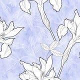 Modello senza cuciture con i fiori in bianco e nero Fotografie Stock Libere da Diritti