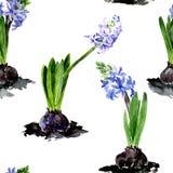 Modello senza cuciture con i fiori del disegno dell'acquerello Fotografia Stock Libera da Diritti
