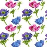 Modello senza cuciture con i fiori del disegno dell'acquerello royalty illustrazione gratis