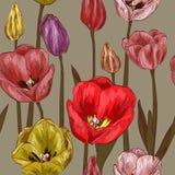 Modello senza cuciture con i fiori del tulipano illustrazione di stock