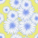 Modello senza cuciture con i fiori della camomilla, disposizione piana del fondo illustrazione di stock