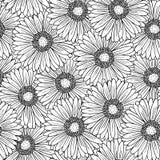 Modello senza cuciture con i fiori della gerbera Fotografie Stock Libere da Diritti