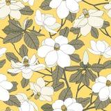 Modello senza cuciture con i fiori e le foglie della magnolia sulla parte posteriore di giallo Fotografia Stock