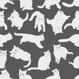Modello senza cuciture con i gatti bianchi in varie posizioni su fondo grigio, disegno della mano fotografie stock