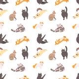Modello senza cuciture con i gatti di razza che dormono, camminando, lavando, allungandosi su fondo bianco Contesto con royalty illustrazione gratis
