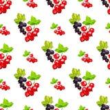 Modello senza cuciture con i mazzi delle bacche dello smrodina rosso e nero su un ramo nel poli stile basso su un fondo bianco illustrazione di stock