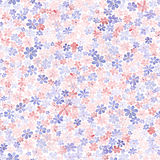 Modello senza cuciture con i piccoli fiori variopinti Paintin dell'acquerello Fotografie Stock Libere da Diritti
