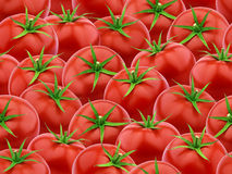 Modello senza cuciture con i pomodori Fotografie Stock Libere da Diritti