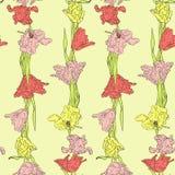 Modello senza cuciture con i tulipani royalty illustrazione gratis