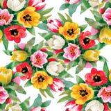 Modello senza cuciture con i tulipani dell'acquerello Fotografia Stock