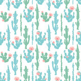 Modello senza cuciture con il cactus Fotografie Stock
