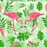 Modello senza cuciture con il fenicottero rosa sui precedenti delle foglie - illustrazione di vettore, ENV royalty illustrazione gratis
