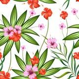 Modello senza cuciture con il fiore tropicale esotico royalty illustrazione gratis