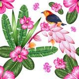 Modello senza cuciture con il fiore tropicale esotico e l'uccello variopinto illustrazione di stock