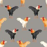 Modello senza cuciture con il gallo 2 Immagine Stock Libera da Diritti