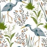 Modello senza cuciture con l'uccello dell'airone e le piante di palude illustrazione di stock