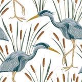 Modello senza cuciture con l'uccello ed il giunco dell'airone Flora e fauna della palude illustrazione vettoriale