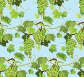 Modello senza cuciture con l'uva e le foglie verdi su fondo blu Fotografia Stock Libera da Diritti