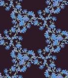 Modello senza cuciture con la cicoria Caleidoscopio rotondo dei fiori e degli elementi floreali Immagine Stock