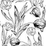 Modello senza cuciture con la mano che estrae i fiori in bianco e nero Fotografie Stock Libere da Diritti