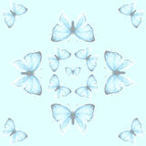 Modello senza cuciture con la rame-farfalla blu Fotografia Stock