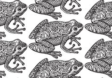 Modello senza cuciture con la rana decorata in bianco e nero di scarabocchio Immagine Stock