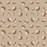 Modello senza cuciture con le api a strisce Fotografia Stock Libera da Diritti