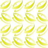 Modello senza cuciture con le banane e la banana organica del testo Contorno giallo luminoso su fondo bianco illustrazione vettoriale