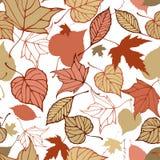Modello senza cuciture con le foglie di autunno stilizzate Fotografia Stock Libera da Diritti