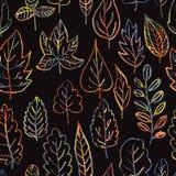 Modello senza cuciture con le foglie di estate e di autunno Fotografia Stock Libera da Diritti