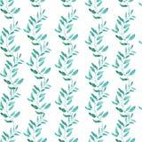 Modello senza cuciture con le foglie di tè verde oliva o verdi Fotografia Stock