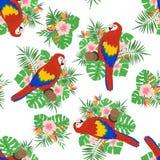 Modello senza cuciture con le foglie, i fiori ed i pappagalli tropicali royalty illustrazione gratis