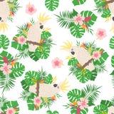 Modello senza cuciture con le foglie, i fiori ed i pappagalli tropicali illustrazione di stock