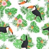 Modello senza cuciture con le foglie, i fiori ed i tucani tropicali royalty illustrazione gratis