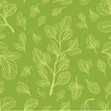 Modello senza cuciture con le foglie sul colore verde chiaro Immagine Stock