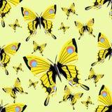 Modello senza cuciture con le grandi farfalle realistiche yellow Insetti realistici illustrazione vettoriale