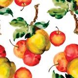 Modello senza cuciture con le mele e le foglie rosse Illustrazione di vettore Immagine Stock Libera da Diritti